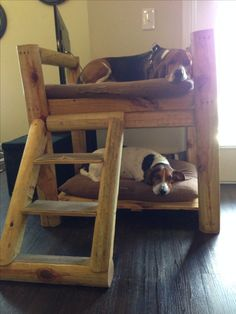 Love this idea! need to make a bunk bed for Lobo and Champ!