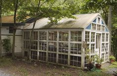 this is EXACTLY how I want my greenhouse to look! Made from old windows!