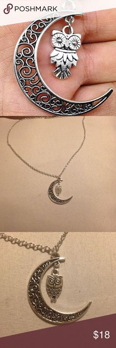 Moon Owl Necklace NWOT silver moon owl necklace. The chain is about 20 inches. Jewelry Necklaces