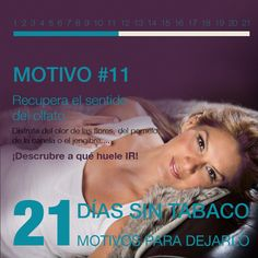 Motivo 11