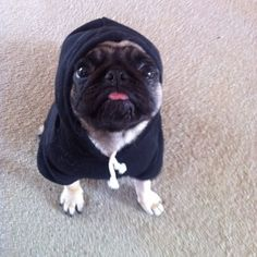 """Your fashions may take some getting used to… No offense."" 
