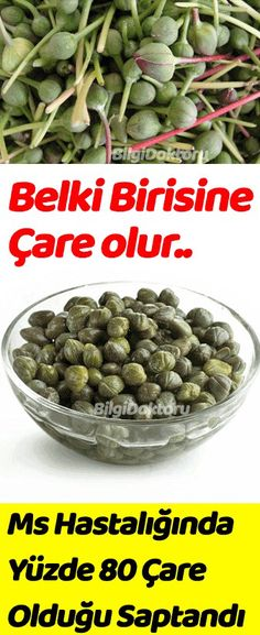 MS HASTALIĞINA YÜZDE 80 ÇARE OLDUĞU SAPTANDI Healthy Diet Recipes, Healthy Life, Healthy Living, Natural Herbs, Natural Medicine, Diet And Nutrition, Herbal Remedies, Health And Beauty, Health Tips