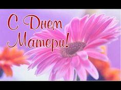 Красивое поздравление с Днем Матери.Красивые цветы для мамы! - YouTube