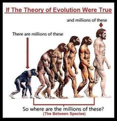 Evolution vs creation https://www.facebook.com/Sciencegasm