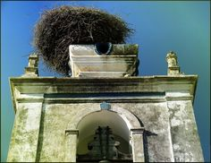Objects in Arraiolos, Portugal (nest details church) - a photo by Teresa Soares