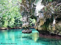 Traveling Morion | Let's explore 7107 Islands: Morion's PhotoTravel Diaries| BEAT THE SUMMER HEAT in Siargao Island