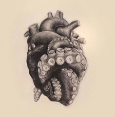 """Repost from - """"Tentacle Heart"""" pencil drawing by artist - drawings_pintous Tattoo Sketches, Tattoo Drawings, Art Sketches, Octopus Tattoos, Octopus Art, Tentacle Tattoo, Octopus Tentacles Drawing, Cute Octopus Tattoo, Octopus Tattoo Design"""