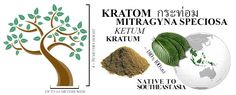 Buy Kratom Powdered Leaf! Guaranteed Consistent Quality! Buy Kratom Bulk & ships from the USA! All Credit Cards Accepted!