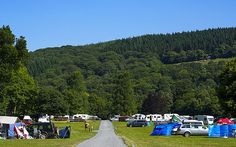 UK campsites: the best places to pitch up for local food - Telegraph Camping Jokes, Camping Survival, Camping With Kids, Family Camping, Caravan Parks Uk, Camping Devon, Uk Campsites, Motorhome Travels, Camper Van Life