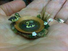 Beth Freeman-Kane, M.A.A. - Wildlife Miniaturist