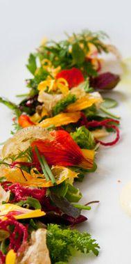 Central, Lima-Peru. Alta cocina fusion. Lima Restaurants, List Of Edible Flowers, Lima Peru, Food Presentation, Recipe Using, Bruschetta, Daisies, South America, Food Inspiration