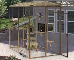 Cat playground:) #cats #catio #CatEnclosure