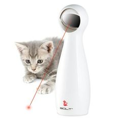 Interactive Laser Pet Toy.