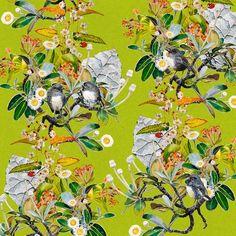 Robins & Rock Daisies  (55cm) Nz Art, Robins, Limited Edition Prints, Daisies, Watercolor Paintings, Digital Prints, Flora, Vibrant, Rock