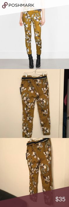 Zara Watercolor Floral Print Trousers Pants FW15 Zara Watercolor Floral Print Trousers Pants- Blue orchard  NWT  Fall Winter 2015 Collection  98 cotton  2 elastic  Faux pockets  Olive/Dark Yellow Color Bold statement piece Pair with white shirt  Perfect for fall and spring  Great condition  Size Medium Zara Pants Straight Leg