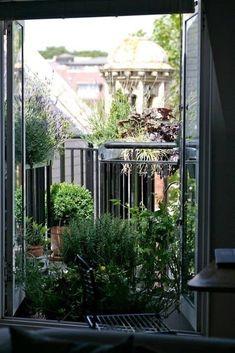 Abre tus puertas hacia un mini jardín de hierbas o un oasis floral.