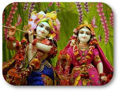 Today's Darshan Sri Sri Radha Vrindavanchandraji @ISKCONNVCC, Pune