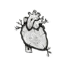 Progetto Legnomia - legno anatomico | Cuore. Enrico Ercolani @enricojercolani on Instagram photo 2016 02:00