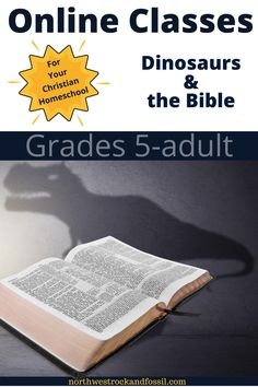 Dinosaurs and the Bible is for grades 5-adult.Click on the video to watch the introduction to this class, or rent by clicking on the upper right-hand corner of the video. Rental for the complete series is for 6 months. #dinosaursforkids #biblicalworldview #Christianhomeschool #geologyforkids Homeschool High School, Homeschooling, Bible Science, Bible Online, Dinosaur Fossils, Dinosaurs, Geology, 6 Months, Middle School