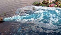 Lại vấn đề về xây dựng hệ thống xử lý nước thải, xả thải trái phép ra môi trường. Thêm một doanh nghiệp xả thải gây ô nhiễm môi trường bị cơ…