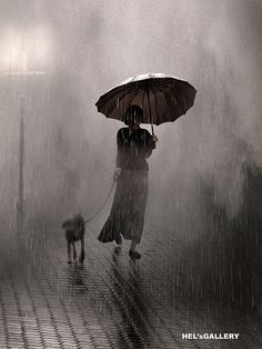 Walk his dog in the rain / Promener son chien sous la pluie
