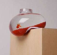 If It's Hip, It's Here: Fish On The Edge. The Bubble Tank by Richard Bell for Psalt Design.