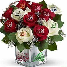 Listen To Quran, Learn Quran, Learn Islam, Islam Muslim, Allah Islam, Islam Quran, Islamic Images, Islamic Pictures, Islamic Art