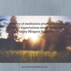Meditation = letting go of expectations Meditation Quotes, Meditation Practices, Letting Go, Let It Be, Ideas, Quotes On Meditation, Giving Up, Lets Go, Thoughts