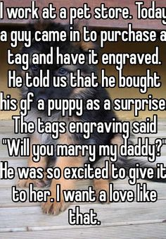 Someone from posted a whisper, which reads I work at a pet store Today a guy came in to purchase a tag and have it engraved He told us that he bought his gf a puppy as a surprise The tags engraving said Will you marry my daddy He was so excit - h Cute Love Stories, Sweet Stories, Funny Stories, Cute Couple Stories, Happy Stories, Cute Relationship Goals, Cute Relationships, Relationship Problems, Cute Quotes