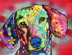 dachshund @Jennifer Gooch