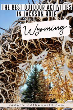 Arizona Travel, Florida Travel, Usa Travel, Jackson Hole Mountain Resort, Visit Yellowstone, Jackson Wyoming, Us Road Trip, Adventure Activities, Hiking Tips