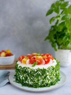Sandwich Cake, Sandwiches, Aga, Savoury Cake, Sushi, Appetizers, Healthy Recipes, Snacks, Cooking