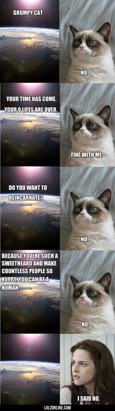 Your time has come, Grumpy Cat…#funny #lol #lolzonline