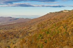 Beautiful foliage in the Allegheny Mountains, West Virginia