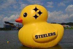 PITTSBURGH STEELERS~Here We Go Steelers, Here We Go! Quack! Quack!