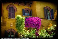 fotografie e altro...: Balcone fiorito - HDR - photographic processing (1...