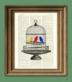 Colorful Birds in Vintage birdcage beautifully by collageOrama
