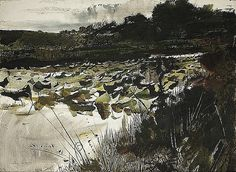 Andrew Wyeth, Lilly Pads