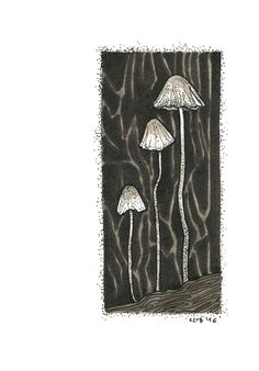#mashroom #black and white #drawing #illustration #art #tattoo #design