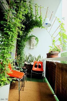 great idea for a small balcony, and a great way to create shade :)