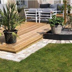 Diy Garden Decor, Palm, Villa, Backyard, Plants, Patio, Backyards, Plant, Fork