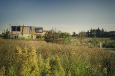 CLAB architettura, Michele Mascalzoni · M house