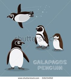 Find penguin swimming cute stock images in HD and millions of other royalty-free stock photos, illustrations and vectors in the Shutterstock collection. Thousands of new, high-quality pictures added every day. Galapagos Penguin, Penguin Illustration, Penguin Cartoon, Nurse Shark, Arctic Animals, Cute Penguins, Cute Images, Royalty Free Stock Photos, Whiteboard