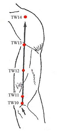 Triple Warmer Meridian Points - www.natural-health-zone.com