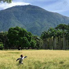 CAPTIONS AVILA Te presentamos la selección del día: <<ÁVILA>> en Caracas Entre Calles. Así como ese enano busca el frisbee los venezolanos buscamos la #Libertad no desistamos! #Venezuela #LOVEnezuela #Justicia ============================  F O T Ó G R A F O  >> @ricsmaal << Visita su galeria =========================== SELECCIÓN @mahenriquezm TAG #CCS_EntreCalles ================ Team: @ginamoca @luisrhostos @mahenriquezm @teresitacc @floriannabd ================ #avila #Caracas…