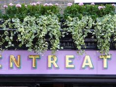 Shop sign for Pentreath & Hall, London.