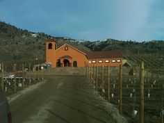 up the vineyard, to the winery