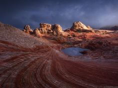 New Instructional Video - Coral Chaos by Alex Noriega on 500px
