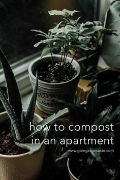 A Composting Guide for Apartment Living from www.goingzerowaste.com #zerowaste #ecofriendly #gogreen #sustainable #compost #composting #apartmentliving
