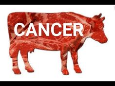 Why red meat cause cancer? - WATCH VIDEO HERE -> http://bestcancer.solutions/why-red-meat-cause-cancer    *** eating red meat causes cancer ***   Humans are the only animal species that are at an increased risk of cancer because of red meat consumption. The study revealed that the reason for this is a rare sugar known as Neu5Gc that can be found in animals, but not in the human body. Please...